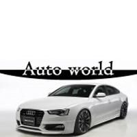 AUTO WORLD DOO