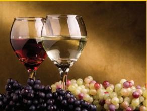 Vinarija Srž Milovanović crvena i bela vina
