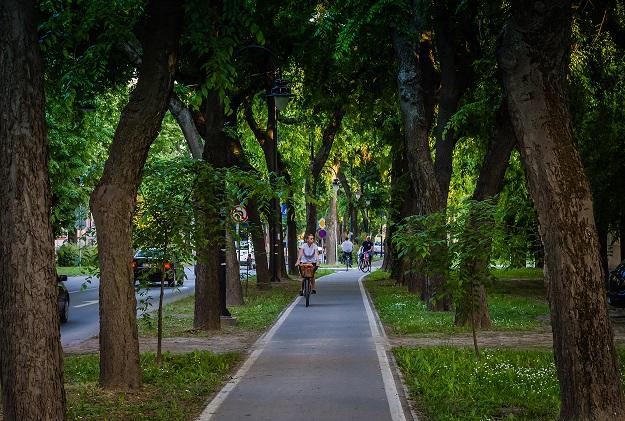 biciklisticka_staza_apatinski_put_sombor