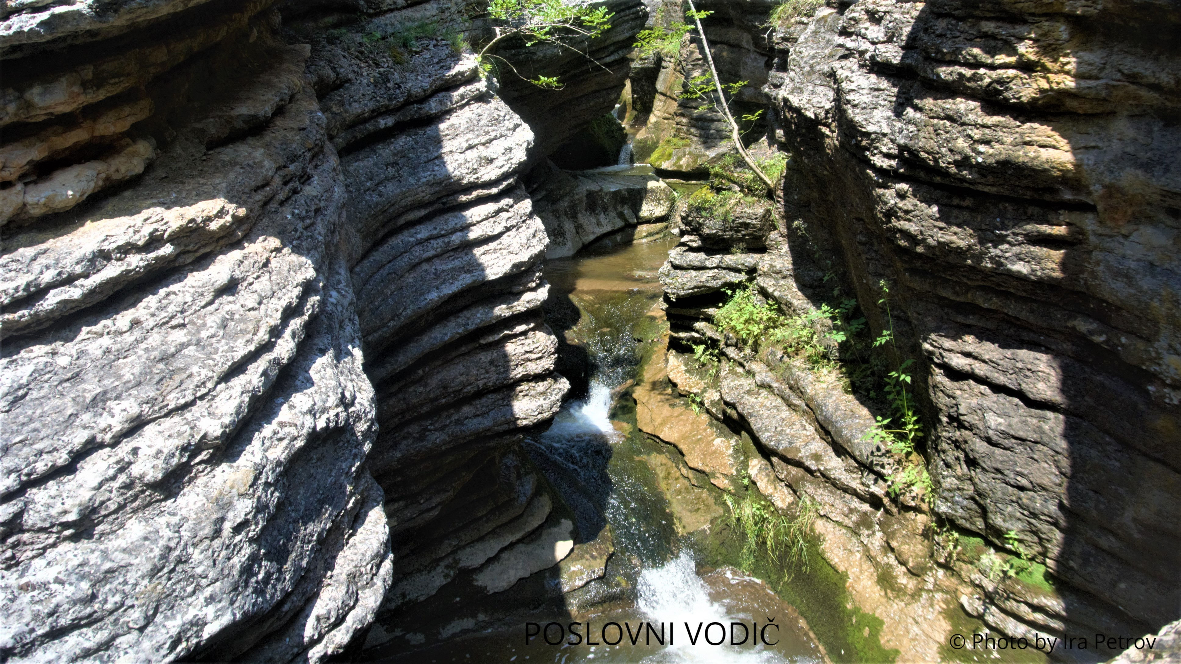 klisura_rosomacke_reke_slavinjsko_grlo_stara_planina_avgust_2019_photo_by_ira_petrov