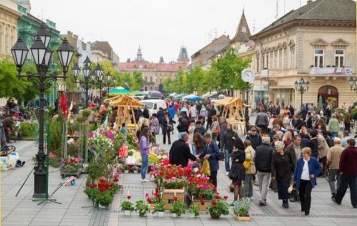 medjunarodni_festival_cveca_sombor