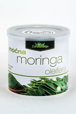 moringa_oleifera_u_prahu_zdravo_bilje