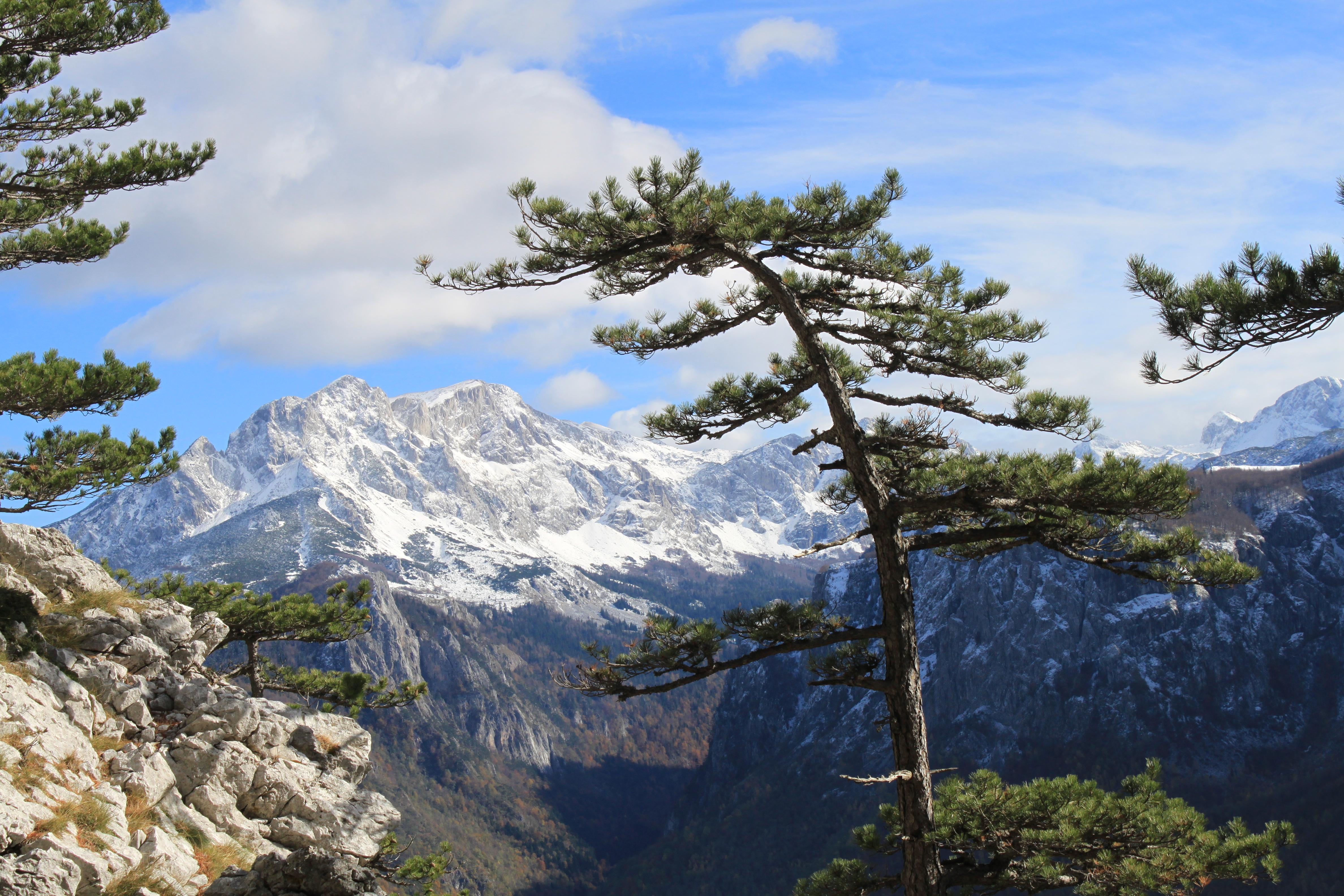 planinski_vrhovi_maglic_nacionalni_park_sutjeska