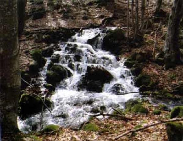 vodopad_borinski_skok