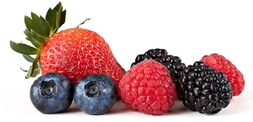 Clas Comerce doo fabrika za preradu voća i povrća
