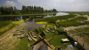specijalni_rezervat_prirode_zasavica