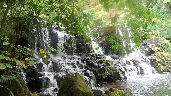 waterfall_ravin_moka_mauritius_photo_by_ira_petrov